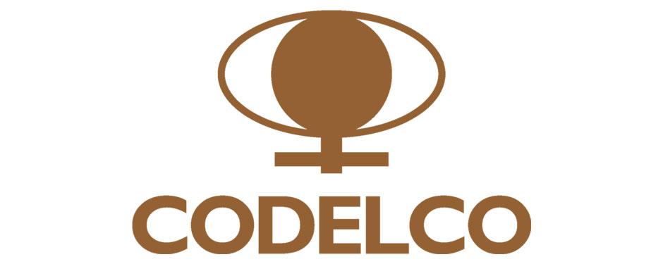 socio-hd-codelco