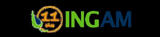 Ingam logo