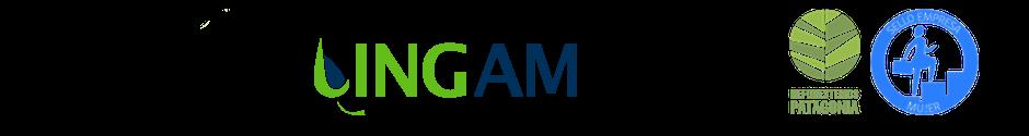 INGAM Ltda logo
